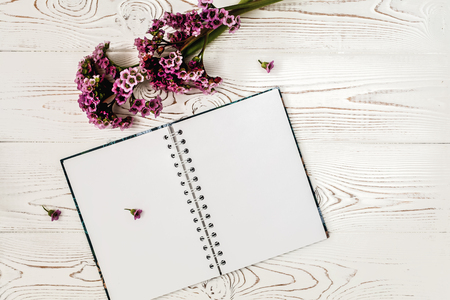 Top view of blank diary or notebook and purple flower on white wooden table. Flat design Stock Photo