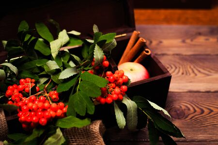 Autumn background with apples, cinnamon and a rowan branch in a wooden chest on a wooden table in rustic style. Copy space.