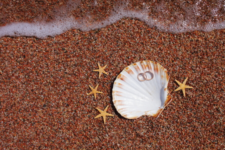 Starfish on the beach with wedding rings photo