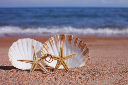 Starfish On The Beach With Wedding Rings Stock Photo Picture And