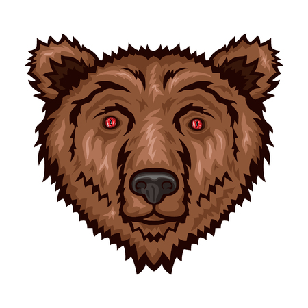 Bear head isolated on white background. Vector illustration.
