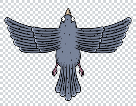 Pigeon. Top view. Vector illustration Isolated on white background. Zdjęcie Seryjne - 116684595