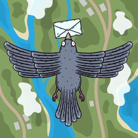 Carrier pigeon. Pigeon postman with a letter in his beak. Top view. Zdjęcie Seryjne - 116684618