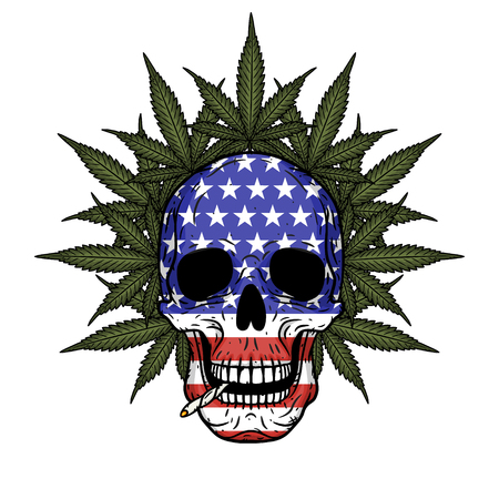 Skull with American flag and marijuana leaves.
