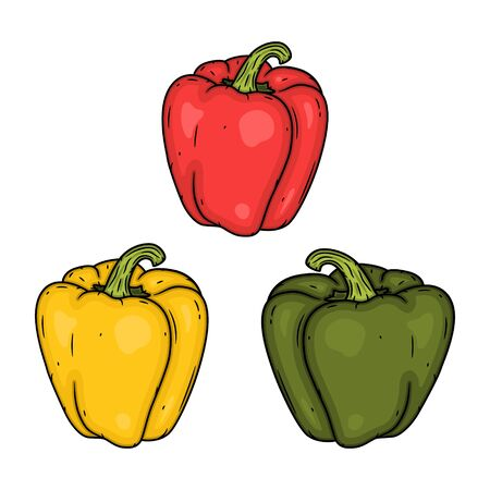 Set red, yellow and green pepper. Vector illustration. Isolated vector illustration of sweet pepper