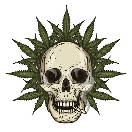Rastaman skull with cannabis leafs. Vector illustration. Illustration