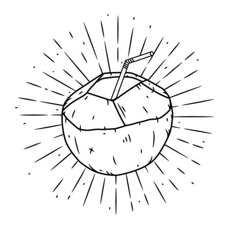 Coconut. Vector illustration with coconut. Used for poster, banner, t-shirt print, bag print, badges and logo design.