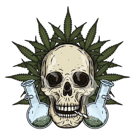 Skull. Skull with bong and marijuana leaves. Rastaman skull with cannabis leafs and spliff Stock Vector - 128653337