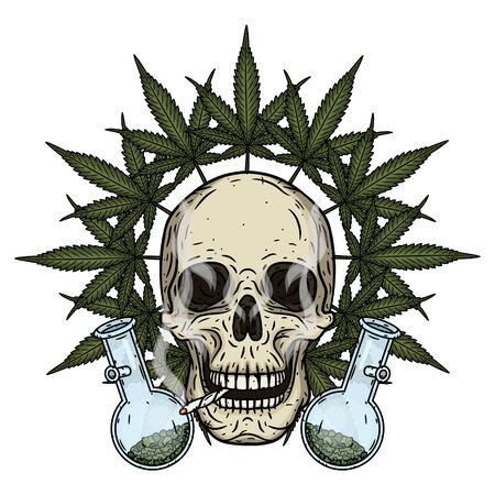 Skull. Skull with bong and marijuana leaves. Rastaman skull with cannabis leafs and spliff Stock Vector - 128653343