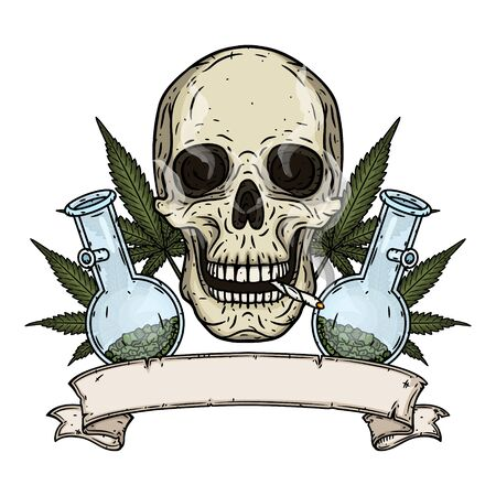 Skull. Skull with bong and marijuana leaves. Rastaman skull with cannabis leafs and spliff.