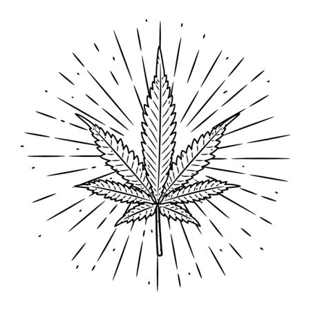 Hand drawn vector illustration with marijuana leaf on blackboard. Used for poster, banner, t-shirt print, bag print, badges Stockfoto - 129267186
