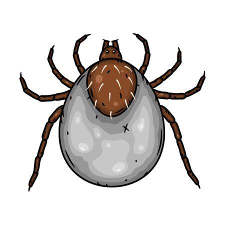 Mite parasites. Tick parasite. Acarus. Acarid vector illustration isolated on white background