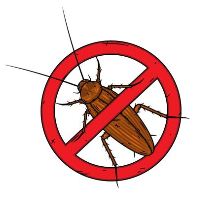 Cockroach. Vector illustration isolated on white background.