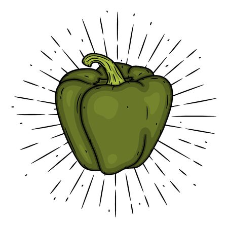 Sweet pepper. Hand drawn vector illustration with sweet pepper and divergent rays. Used for poster, banner, web, t-shirt print, bag print, badges, flyer,  design and more. Ilustração