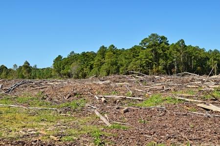 land ontruimd en bomen vernietigd door machines