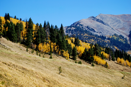 Longs Peak viewed from Estes Park, Colorado during autumn. Banco de Imagens