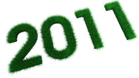 Ecological New Year 2011 Grass photo