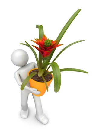 floriculturist: 3d characters isolated on white background series Stock Photo