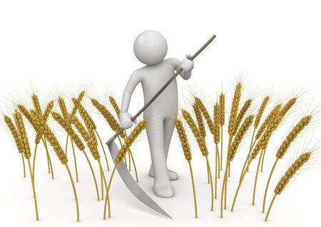 scythe: Carretera de 7000px muy detalladas sobre hierba campo - colecci�n de naturaleza