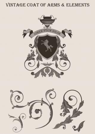 Uitstekende vignet vector elementen. Wapenschild. Bloemen klassiek decor. Hoge detail kwaliteit vector.