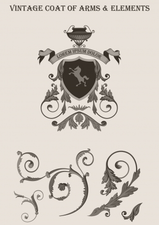 Vintage vignette vector elements. Coat of arms. Floral classic decor design.  High detail quality vector. Çizim