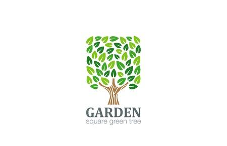 logos empresa: Logo Árbol Verde Forma cuadrada plantilla de diseño vectorial. Eco Granja de logo. Icono Garden. Vectores