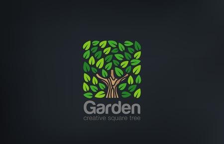 cuadrados: Resumen Logo Forma cuadrada plantilla vector Árbol Verde. Icono Green Farm Jardín de logo. Concepto de Eco.