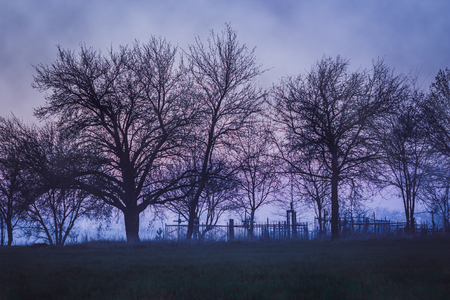 dismal: Dismal landscape with old cemetery with trees and fog