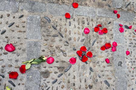 Rose petals lying on the floor.