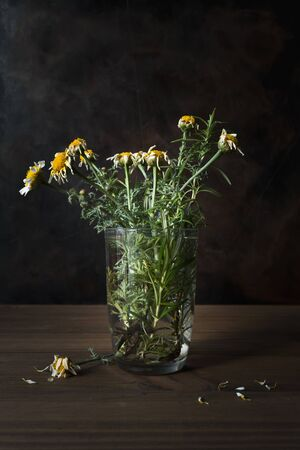 Concept of death. Still life with withered flowers in a glass with water on wooden table with dark background.