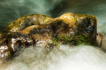 A wet rock in the middle of a mountain stream glows in the sunlight. Foto de archivo