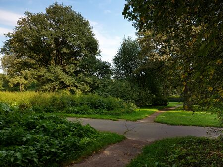 walking paths: Walking paths in the urban Park. Ostankino Park on a Sunny summer day.