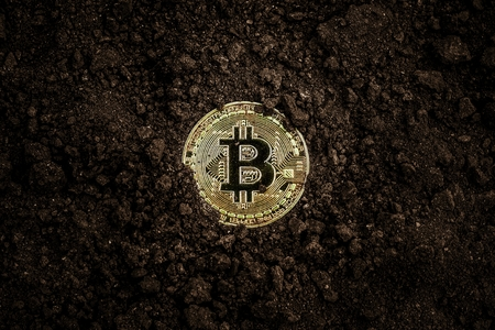 Mining golden bitcoins. Shiny golden bitcoin in soil.