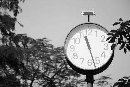 clock in the park - monochrome