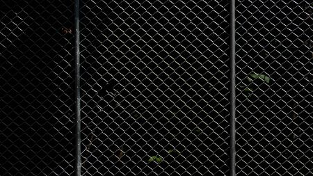 cage metal net - background