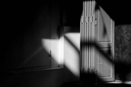 antique wood door with shadow - monochrome