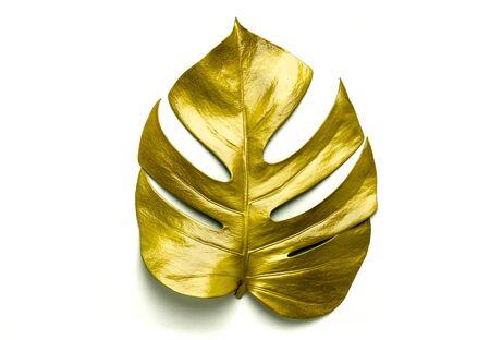golden leaves isolated on white background. 版權商用圖片