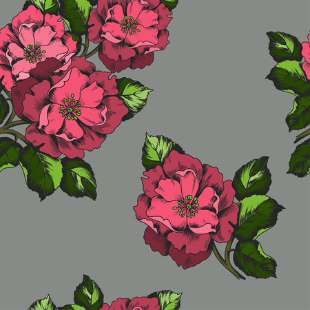 peon: Seamless pattern with flowers peons for printing on paper or fabric.