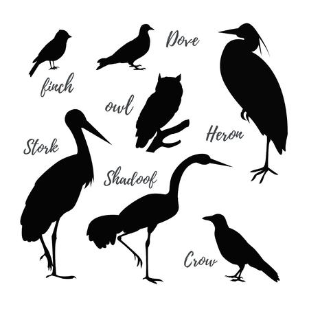 Set of vector bird icons.