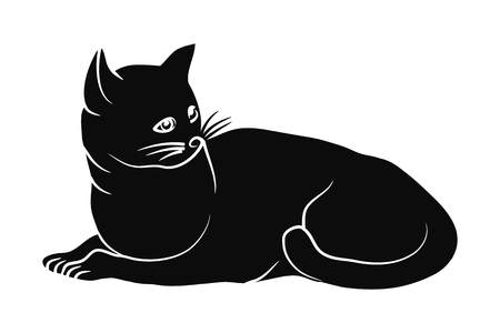 Isolated black cat on a white background