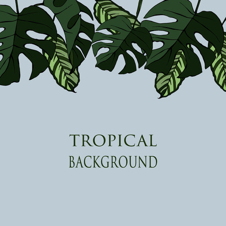 Vector template for a banner or flyer with tropical leaves and place for text, hand drawing illustration.