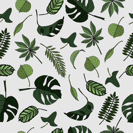 Seamless pattern with different tropical and exotic leaves, vector hand-drawn illustration 向量圖像