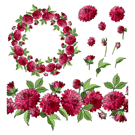 Set of dahlia floral elements isolated on white background, wreath and seamless brush of flowers, vector illustration