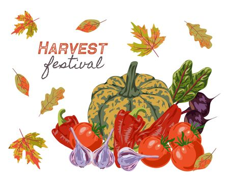 Harvest Festival. Different vegetables and autumn leaves isolated on white background, Flat hand drawing vector illustration