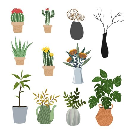 Set of isolated flowers in pots, vases and baskets - succulents, cacti, monstera. Vector flat illustration.