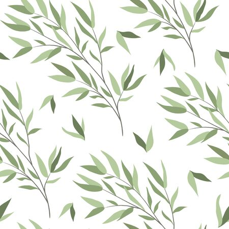 Seamless pattern with branches of a willow on a white background. Vector illustration