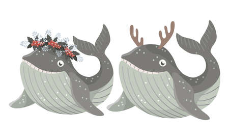 Set of Isolated baby whale with wreath of winter flowers and in deer antlers. Vector illustration