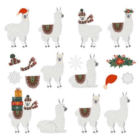 Isolated Vector set of Llamas 矢量图像