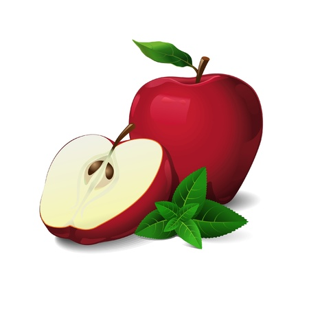 mint leaves: Red Chief Apples with leaves of mint Illustration