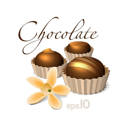 cacao: Chocolate Candy With Vanilla Flower Illustration